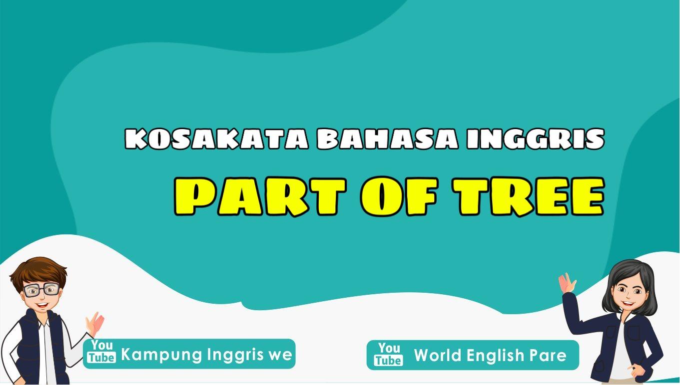 Belajar Lagi Yuk! Inilah Nama Bagian-Bagian Pohon dalam Bahasa Inggris (Part of Tree)